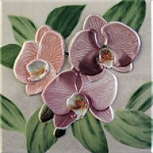 Orquideas Placa Decor Rosa