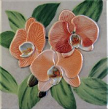 Orquideas Placa Decor Naranja