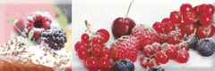Decor Candy Fruits 04